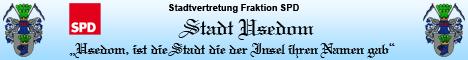 Stadtvertretung Fraktion SPD/LINKE